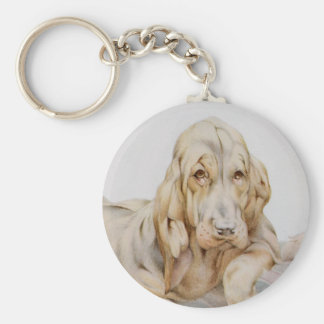 Vintage Cute Bloodhounds, Puppy Dogs by EJ Detmold Basic Round Button Keychain