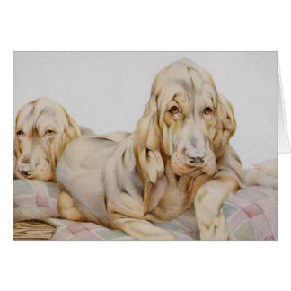 Vintage Cute Bloodhounds, Puppy Dogs by EJ Detmold Greeting Card