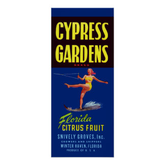 Vintage Cypress Gardens Florida Citrus Fruit Poster