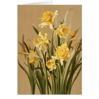 Vintage Daffodils Note Card