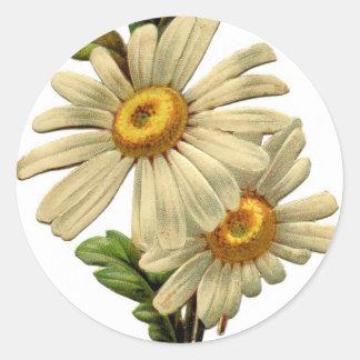 Vintage Daisy Classic Round Sticker