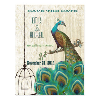 Vintage Damask Peacock Birdcage Save the Date Postcard