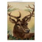 Vintage Deer Buck Stag Nature Rustic Christmas Card