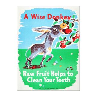 Vintage Dental Raw Fruit Clean Teeth Health Donkey Canvas Print