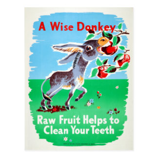 Vintage Dental Raw Fruit Clean Teeth Health Donkey Postcard