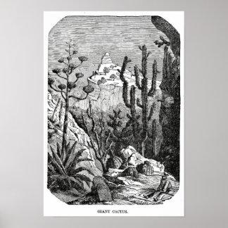 Vintage desert / giant cactus illustration poster