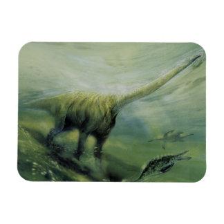 Vintage Dinosaurs, Brachiosaurus Swimming in Ocean Rectangular Photo Magnet