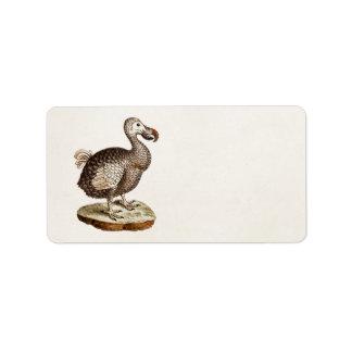 Vintage Dodo Bird Illustration 1700s Dodo Birds Label