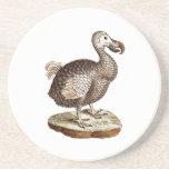Vintage Dodo Bird Retro Dodos Birds 1700s Drink Coaster