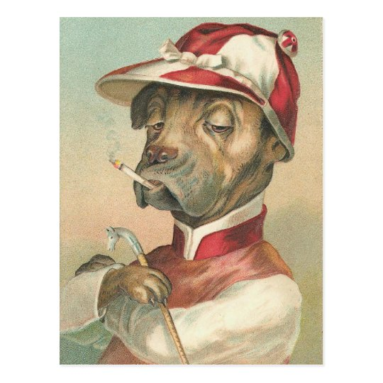 Vintage Dog Jockey Postcard