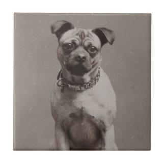 Vintage Dog Tile