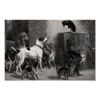 Vintage Dogs And Cats Meeting In The Alley Poster