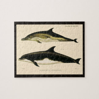 Vintage Dolphins, Marine Animals and Mammals Jigsaw Puzzle