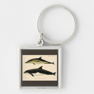 Vintage Dolphins, Marine Animals and Mammals Keychain