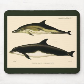 Vintage Dolphins, Marine Animals and Mammals Mouse Pad
