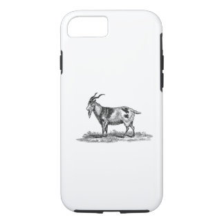 Vintage Domestic Goat Illustration - 1800's Goats iPhone 8/7 Case