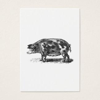 Vintage Domestic Hog Illustration - 1800's Pig Business Card