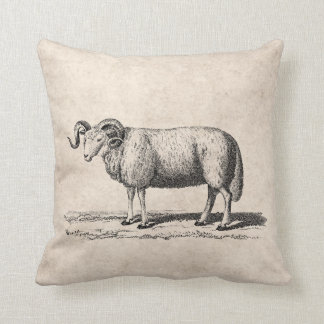 Vintage Domestic Sheep Illustration - 1800's Ram Throw Pillow