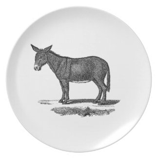 Vintage Donkey Illustration - 1800's Donkeys Plate