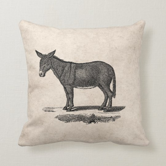 Vintage Donkey Illustration - 1800's Donkeys Throw Pillow