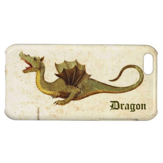 Vintage Dragon Case For iPhone 5C
