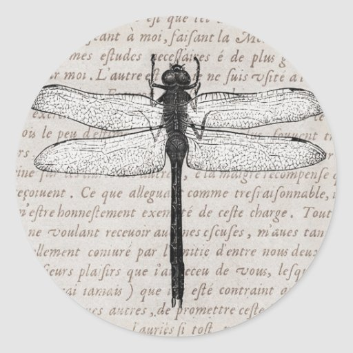 Vintage Dragonfly and Antique Text Collage Round Stickers