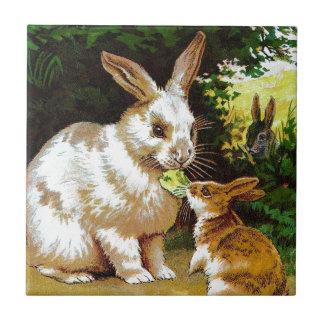 Vintage Drawing: Little Bunnies Tile