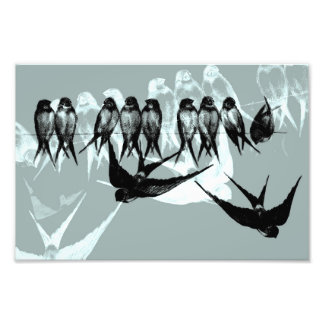 """Vintage Dreams"" - Swallows on line Photo Print"