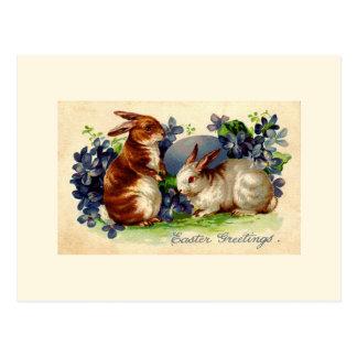 Vintage Easter Bunny Post Card