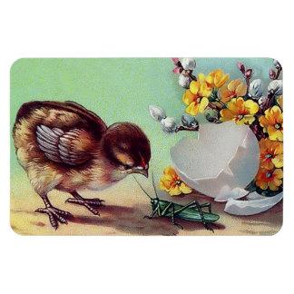 Vintage Easter Chick and Bug. Gift Magnet