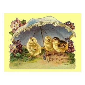 Vintage Easter Chicks & Parasol Postcard