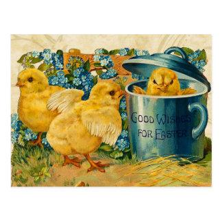 Vintage Easter Chicks Postcard