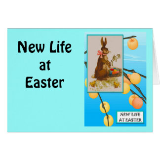 Vintage Easter greetings, Rabbit with pink bow Greeting Card