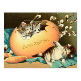 Vintage Easter Kitten Postcard