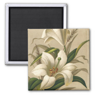 Vintage Easter Lilies, Victorian Flowers in Bloom Square Magnet