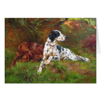 Vintage - English & Irish Setter Dogs, Card