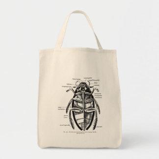 Vintage Entomology Hydrophilidae Scavenger Beetle Tote Bag