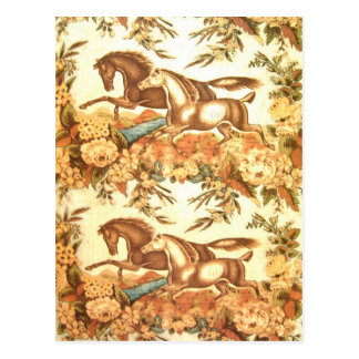 Vintage Equestrian Horse Postcard 3