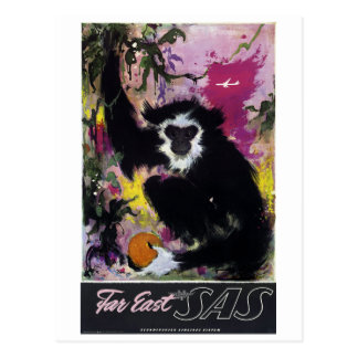 Vintage Far East Gibbon Monkey Travel Postcard