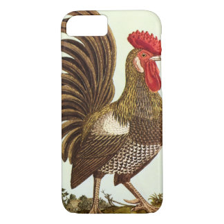 Vintage Farm Animals Chickens, Proud Rooster Case-Mate iPhone Case