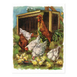 Vintage Farm Animals, Rooster, Hens, Chickens Postcards