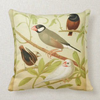 vintage finch and sparrow throw pillow