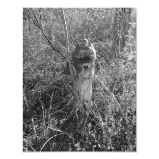 Vintage Fire Hydrant Photo Print