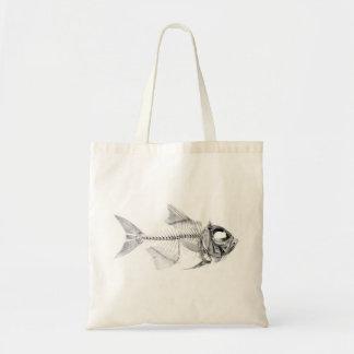 Vintage fish skeleton etching