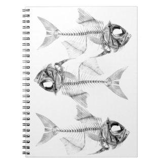Vintage fish skeleton etching note books