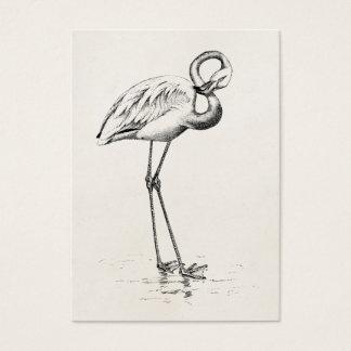 Vintage Flamingo Bird Antique Bird Template Business Card