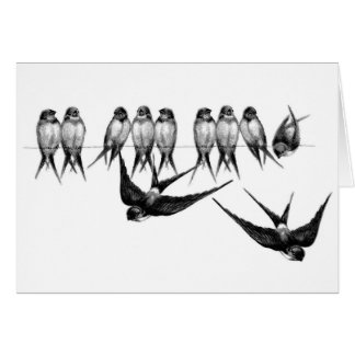 Vintage Flock of Swallows (Blank Inside), Card