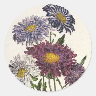 Vintage Floral, Antique Purple Aster Flowers Round Sticker