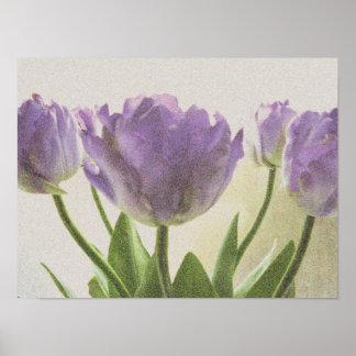 Vintage floral art poster   Purple tulip flowers