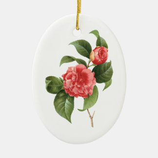 Vintage Floral, Pink Camellia Flowers by Redoute Ceramic Ornament